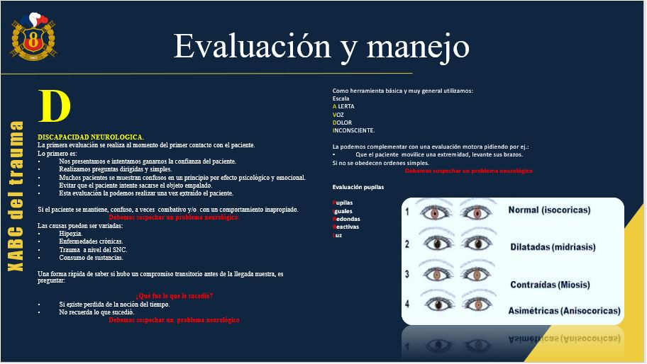 presentacion 8